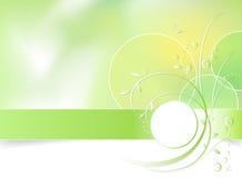 Fond vert de fleur de source Images stock