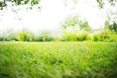 Fond vert de paysage Photos libres de droits