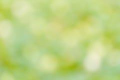 Fond vert de tache floue. Images libres de droits