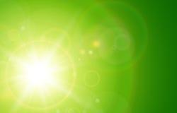 Fond vert ensoleillé Photo libre de droits