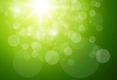 Fond vert ensoleillé Image libre de droits