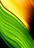Fond vert et orange illustration stock