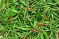 Fond vert et rouge de /poivron images stock