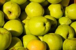 Fond vert frais d'Apple, texture Photographie stock libre de droits