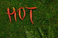 Fond vert, inscription sous forme de poivrons d'un rouge ardent Image libre de droits
