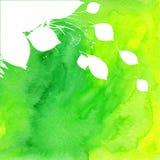 Fond vert peint par aquarelle avec le blanc Photos stock