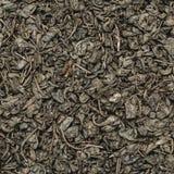 Fond vert sec de texture de feuilles de thé, place Photo stock