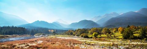Fond vibrant de panorama d'automne avec coloré photographie stock libre de droits