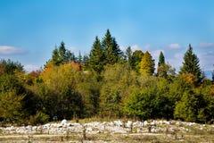 Fond vibrant de panorama d'automne avec coloré images libres de droits