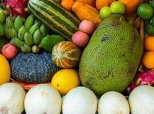 Fond vibrant naturel de fruit tropical Photo exotique crue et mûre de plan rapproché de fruit Papier peint végétarien coloré photo libre de droits