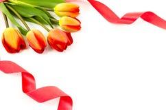 Fond vide de carte postale avec les fleurs colorées et le ruban rouge Photo libre de droits