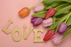 Fond vide rose en bois de l'espace de copie avec les tulipes colorées Images stock