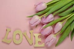 Fond vide rose en bois de l'espace de copie avec les tulipes roses Image libre de droits