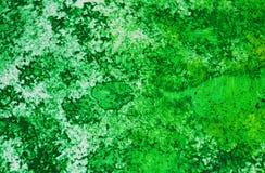 Fond vif mou romantique vert d'aquarelle de peinture, fond de peinture abstrait d'aquarelle images stock