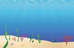 Fondale marino del fondo dell'oceano Fotografie Stock