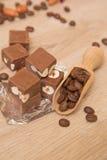 Fondant de chocolat avec des écrous Photographie stock