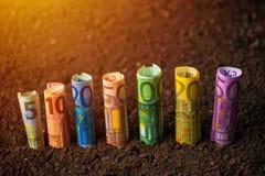 Fondi dell'euro per agricoltura Immagine Stock Libera da Diritti