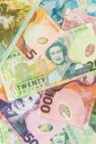 Fondi della Nuova Zelanda Fotografia Stock