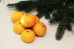 Fondo, árbol y mandarinas de la Navidad Foto de archivo libre de regalías