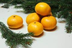 Fondo, árbol y mandarinas de la Navidad Fotografía de archivo libre de regalías
