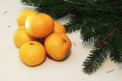 Fondo, árbol y mandarinas de la Navidad Fotos de archivo
