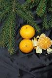 Fondo, árbol y mandarinas de la Navidad Fotos de archivo libres de regalías