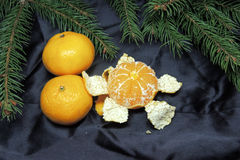Fondo, árbol y mandarinas de la Navidad Imágenes de archivo libres de regalías