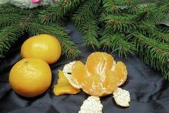 Fondo, árbol y mandarinas de la Navidad Foto de archivo
