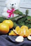 Fondo, árbol y mandarinas de la Navidad Imagenes de archivo