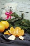 Fondo, árbol y mandarinas de la Navidad Fotografía de archivo
