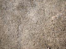 Fondo áspero del cemento viejo Fotografía de archivo