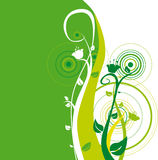 Fondo 15 (vector). Background of flowers and leaf in green Stock Photography