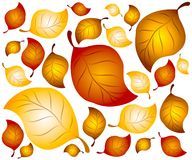 Fondo 2 de las hojas de otoño Imagen de archivo
