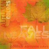 Fondo 2 del otoño Fotografía de archivo