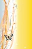 Fondo abstracto colorido con la mariposa Fotos de archivo
