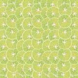 Fondo abstracto con agrios de las rebanadas del limón Fotografía de archivo libre de regalías