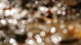 Fondo abstracto con el centelleo, luces del bokeh metrajes