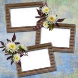 Fondo abstracto con los marcos y las flores Fotografía de archivo