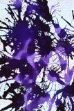 Fondo abstracto con negro Fotos de archivo