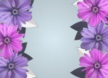 Fondo abstracto de Anemone Flower Realistic Vector Frame Foto de archivo libre de regalías
