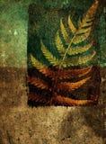 Fondo abstracto de Grunge con la hoja del helecho imagenes de archivo