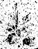 Fondo abstracto de la cubierta Cartel monocromático de la textura Envoltura del Grunge Ilustración del vector rasguñado ilustración del vector