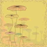 Fondo abstracto de la flor. Foto de archivo libre de regalías