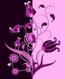 Fondo abstracto de la flor Imagen de archivo