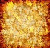 Fondo abstracto de la hoja del otoño Foto de archivo libre de regalías