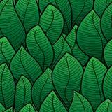 Fondo abstracto de la hoja verde Fotografía de archivo libre de regalías