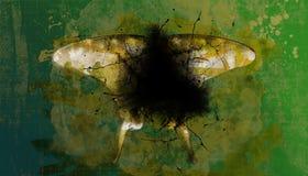Fondo abstracto de la mariposa Foto de archivo libre de regalías