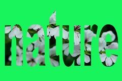 Fondo abstracto de la naturaleza del texto Foto de archivo libre de regalías