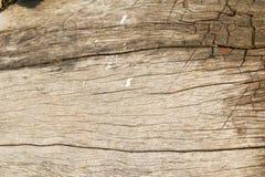Fondo abstracto de la pared de madera Fotos de archivo libres de regalías