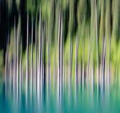Fondo abstracto de los árboles vacíos borrosos Foto de archivo